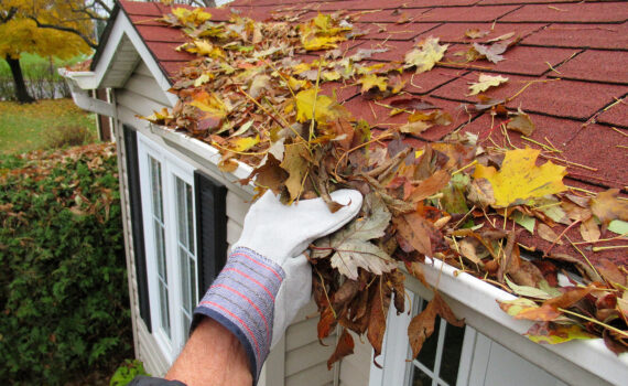 Spring Cleaning for Your Roof in Arizona