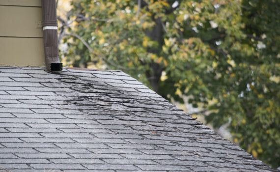 Extend The Life Of Your Roof With These Maintenance Tips